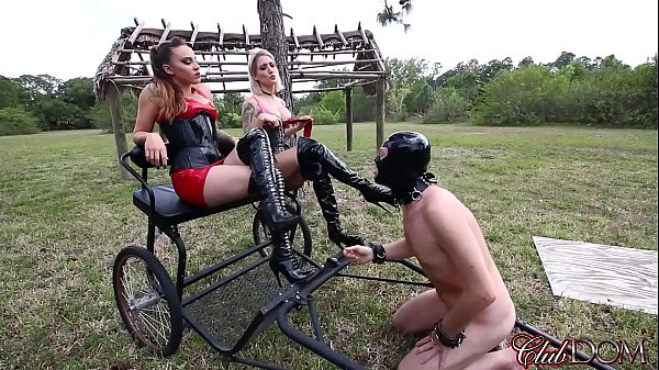 Pegging, Pony, Whipped, Peg, Ass slave, Whipping slave